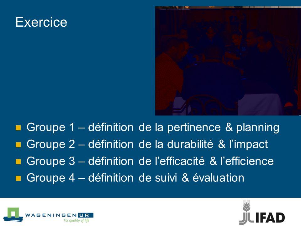 Exercice Groupe 1 – définition de la pertinence & planning Groupe 2 – définition de la durabilité & limpact Groupe 3 – définition de lefficacité & lef