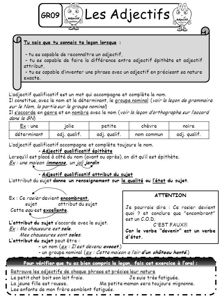 GR09 Les Adjectifs Ex : unejoliepetitechèvrenoire déterminantadj. qualif. nom communadj. qualif. ATTENTION Je pourrais dire : Ce rosier devient quoi ?