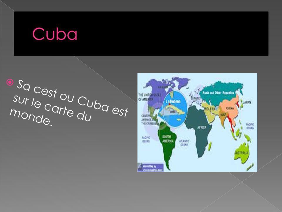 Sa cest les symboles de Cuba. Sa cest le oiseaux de symbole de Cuba. Sa cest le symbole de Cuba.