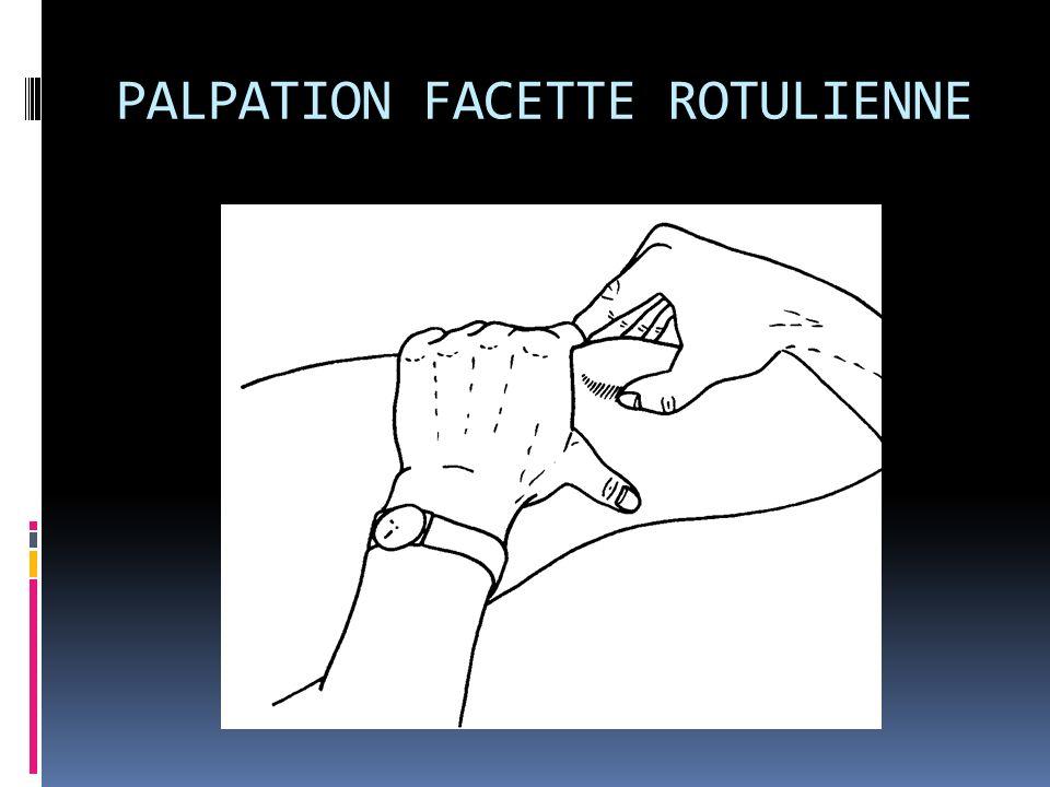 PALPATION FACETTE ROTULIENNE