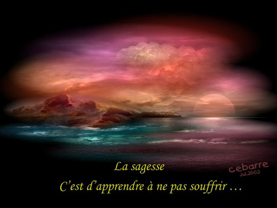 La sagesse Cest dapprendre à ne pas souffrir …