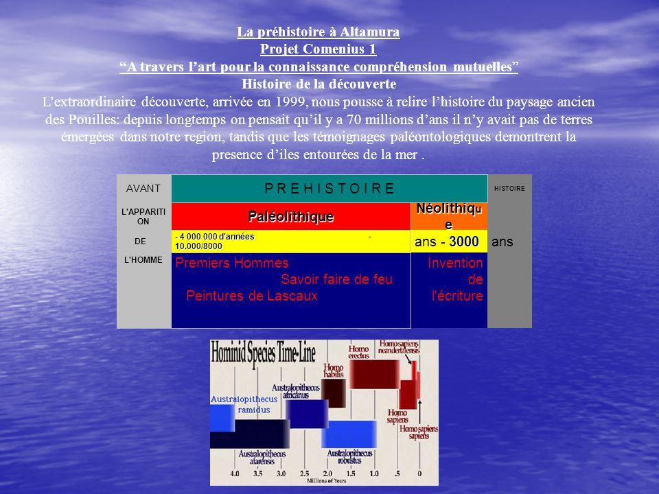 La préhistoire à Altamura Projet Comenius 1 A travers lart pour la connaissance compréhension mutuelles Histoire de la découverte Lextraordinaire déco