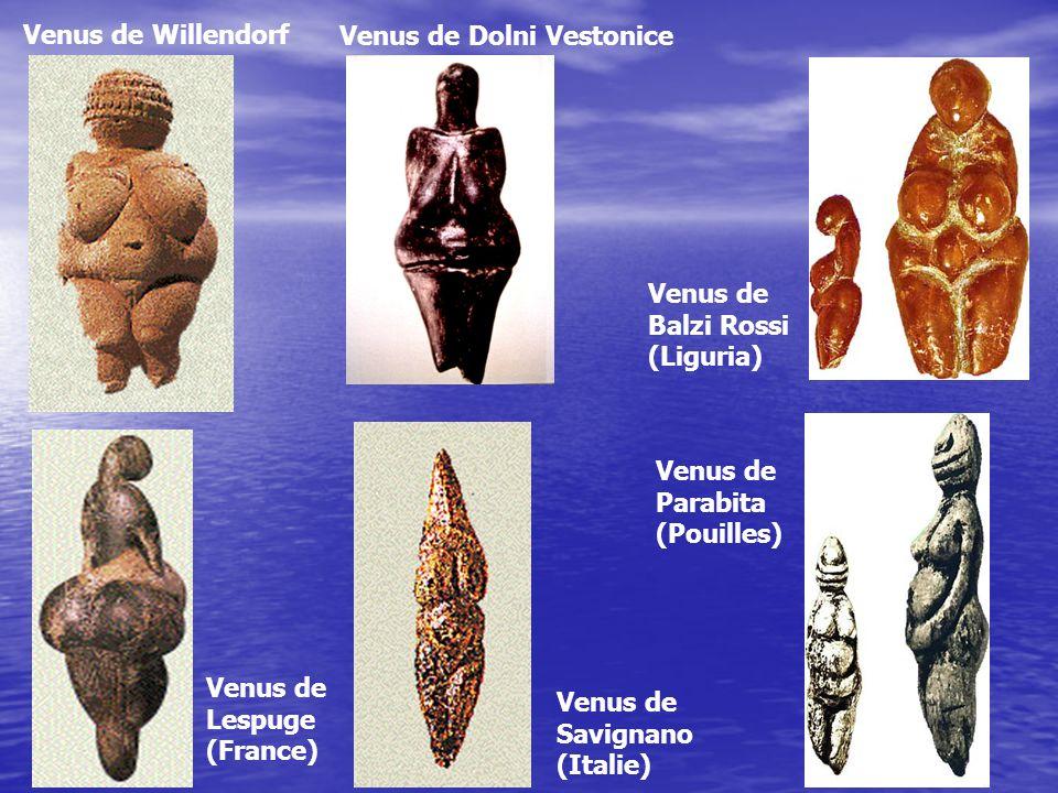Venus de Willendorf Venus de Dolni Vestonice Venus de Lespuge (France) Venus de Savignano (Italie) Venus de Balzi Rossi (Liguria) Venus de Parabita (P