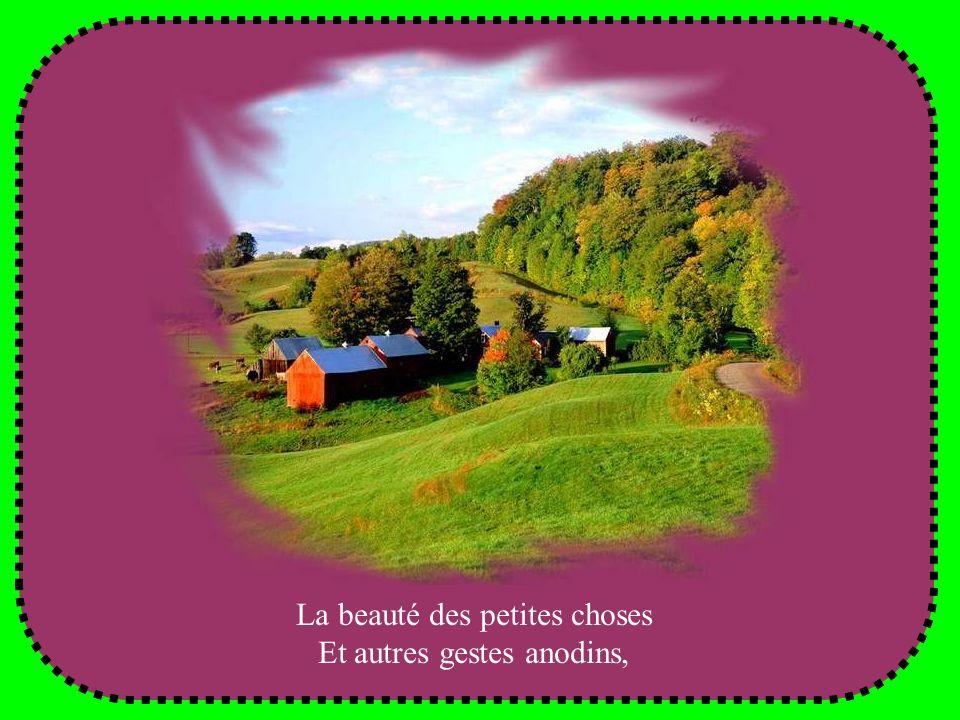 Chanson : « La beauté des petites choses », interprétée par Nicolas Ciccone.