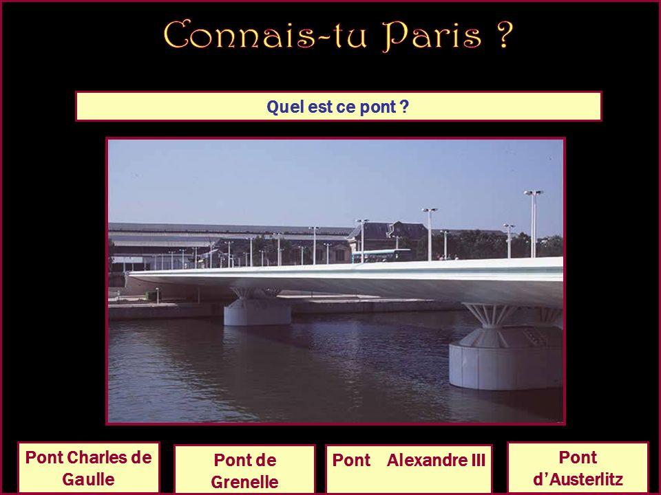 Quel est ce pont Pont de lAlmaPont dArcole Pont Charles de Gaulle Pont dAusterlitz