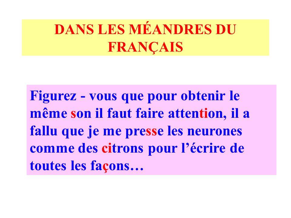 DANS LES MÉANDRES DU FRANÇAIS Je ne peux pas y croire !