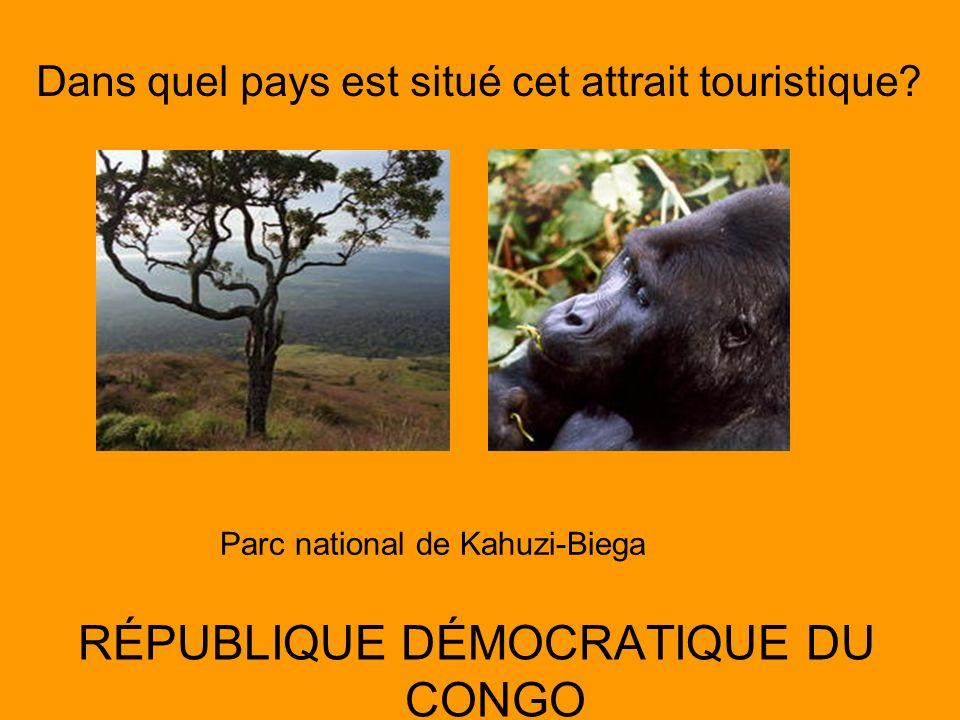 Dans quel pays est situé cet attrait touristique? RÉPUBLIQUE DÉMOCRATIQUE DU CONGO Parc national de Kahuzi-Biega