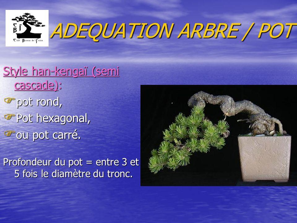 ADEQUATION ARBRE / POT Style han-kengaï (semi cascade): F pot rond, F Pot hexagonal, F ou pot carré. Profondeur du pot = entre 3 et 5 fois le diamètre