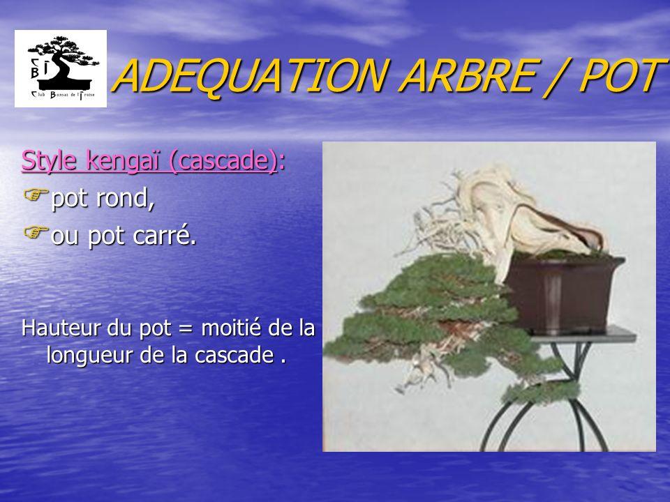 ADEQUATION ARBRE / POT Style kengaï (cascade): F pot rond, F ou pot carré. Hauteur du pot = moitié de la longueur de la cascade.