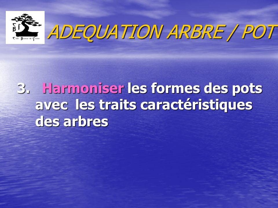 ADEQUATION ARBRE / POT 3. Harmoniser les formes des pots avec les traits caractéristiques des arbres