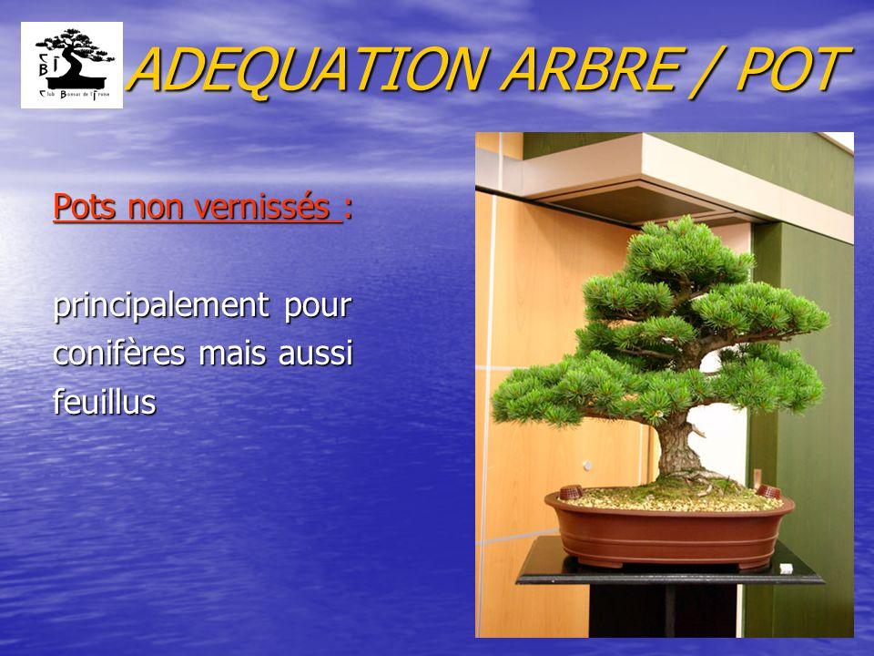 ADEQUATION ARBRE / POT Pots non vernissés : principalement pour conifères mais aussi feuillus