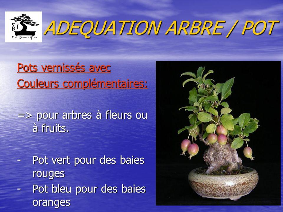 ADEQUATION ARBRE / POT Pots vernissés avec Couleurs complémentaires: => pour arbres à fleurs ou à fruits. -Pot vert pour des baies rouges -Pot bleu po