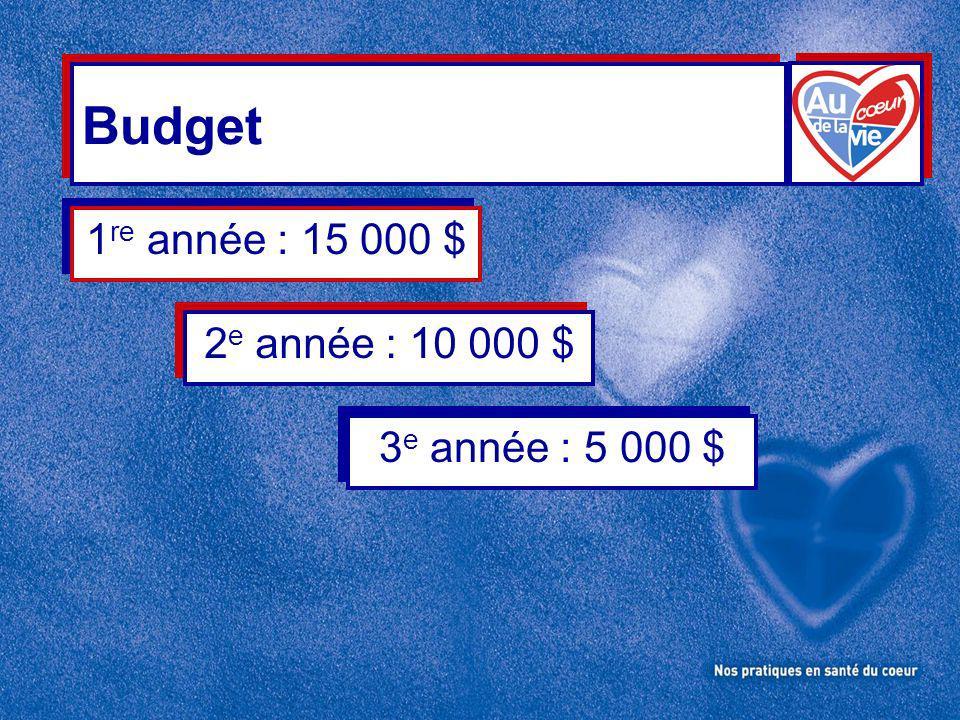 Budget 1 re année : 15 000 $ 2 e année : 10 000 $ 3 e année : 5 000 $