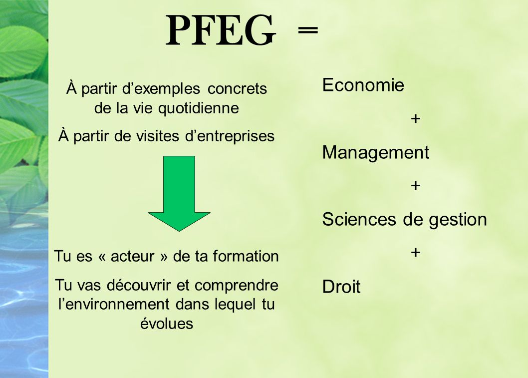 PFEG = Economie + Management + Sciences de gestion + Droit À partir dexemples concrets de la vie quotidienne À partir de visites dentreprises Tu es « acteur » de ta formation Tu vas découvrir et comprendre lenvironnement dans lequel tu évolues