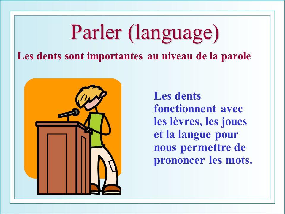 Parler (language) Les dents sont importantes au niveau de la parole Les dents fonctionnent avec les lèvres, les joues et la langue pour nous permettre