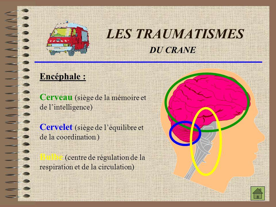 LES TRAUMATISMES DES MEMBRES FRACTURE : Une fracture est la rupture de continuité (cassure) d un os des membres.