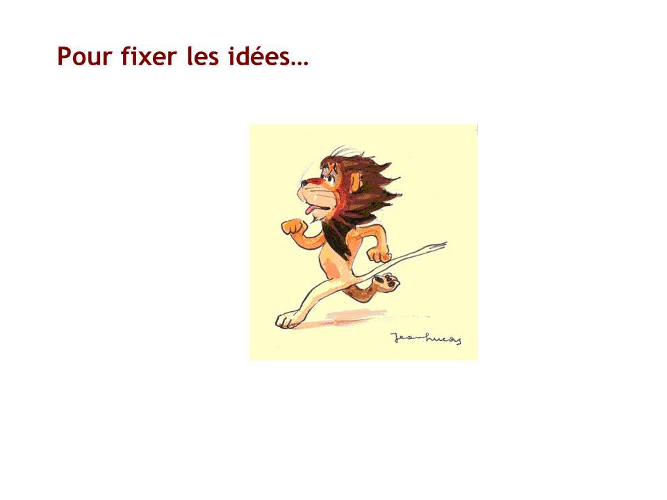 Pour fixer les idées…