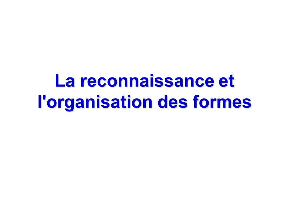 La reconnaissance et l'organisation des formes