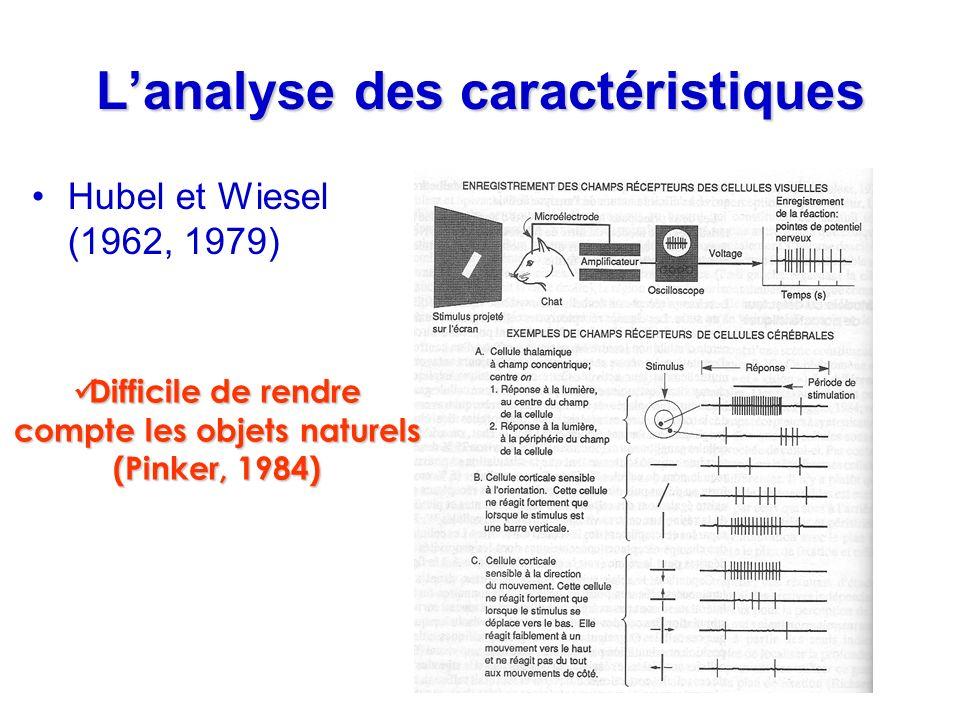 Lanalyse des caractéristiques Hubel et Wiesel (1962, 1979) Difficile de rendre compte les objets naturels (Pinker, 1984) Difficile de rendre compte le