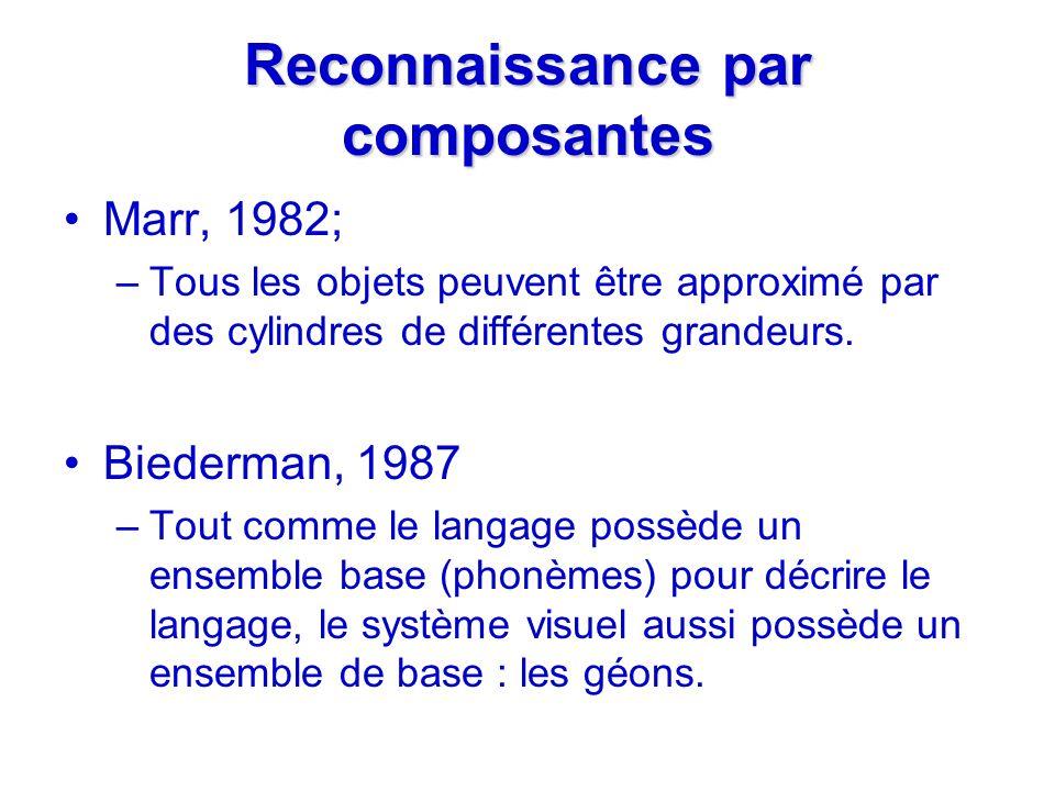 Reconnaissance par composantes Marr, 1982; –Tous les objets peuvent être approximé par des cylindres de différentes grandeurs. Biederman, 1987 –Tout c