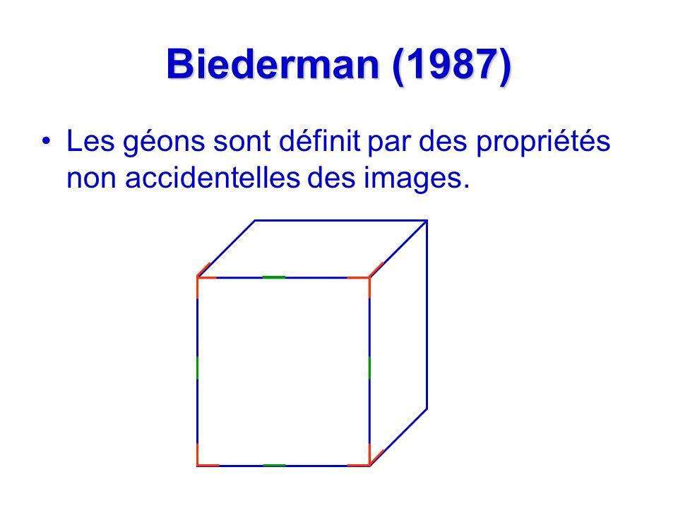 Biederman (1987) Les géons sont définit par des propriétés non accidentelles des images.