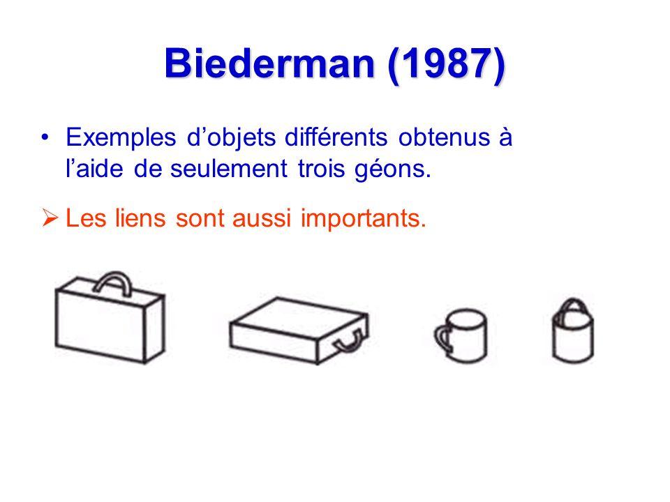 Biederman (1987) Les liens sont aussi importants. Exemples dobjets différents obtenus à laide de seulement trois géons.