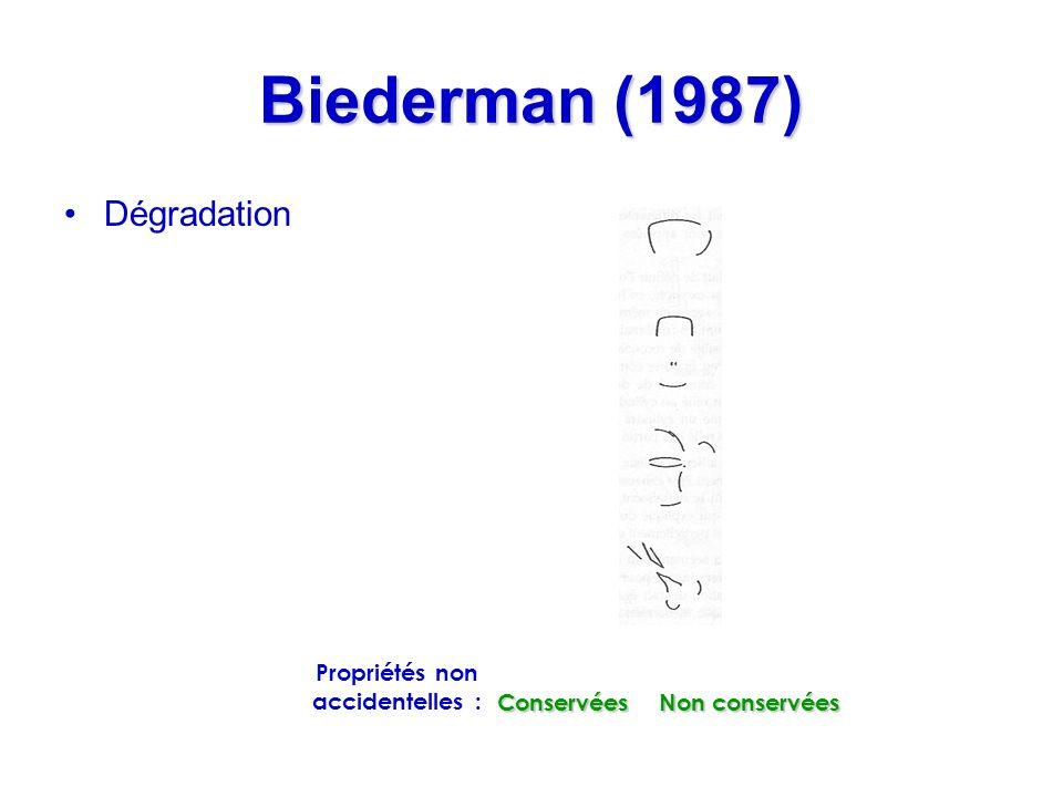 Biederman (1987) Dégradation Conservées Non conservées Propriétés non accidentelles :