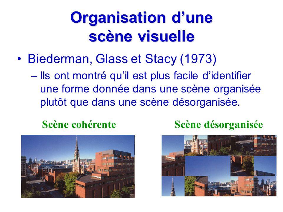 Organisation dune scène visuelle Biederman, Glass et Stacy (1973) –Ils ont montré quil est plus facile didentifier une forme donnée dans une scène org