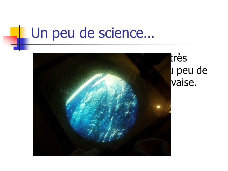 Un peu de science… Lexposition EXPLORA a été très intéresante.