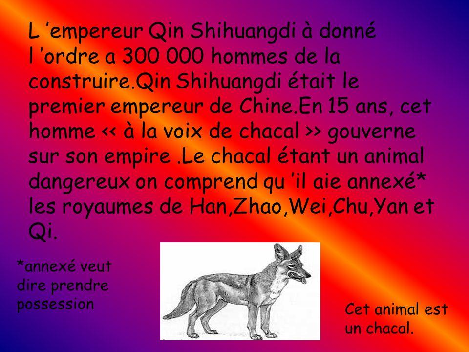 L empereur Qin Shihuangdi à donné l ordre a 300 000 hommes de la construire.Qin Shihuangdi était le premier empereur de Chine.En 15 ans, cet homme > gouverne sur son empire.Le chacal étant un animal dangereux on comprend qu il aie annexé* les royaumes de Han,Zhao,Wei,Chu,Yan et Qi.