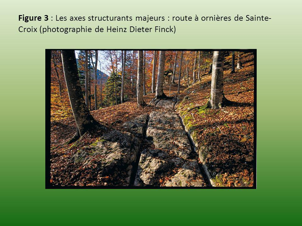 Figure 3 : Les axes structurants majeurs : route à ornières de Sainte- Croix (photographie de Heinz Dieter Finck)