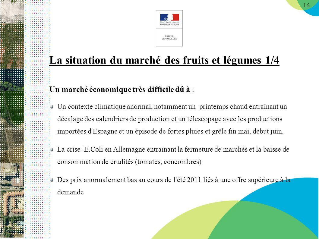 16 La situation du marché des fruits et légumes 1/4 Un marché économique très difficile dû à : Un contexte climatique anormal, notamment un printemps