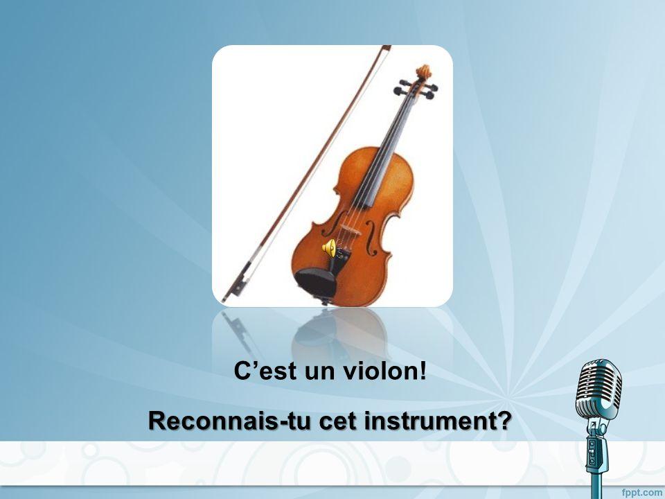 Cest un piano! Reconnais-tu cet instrument?