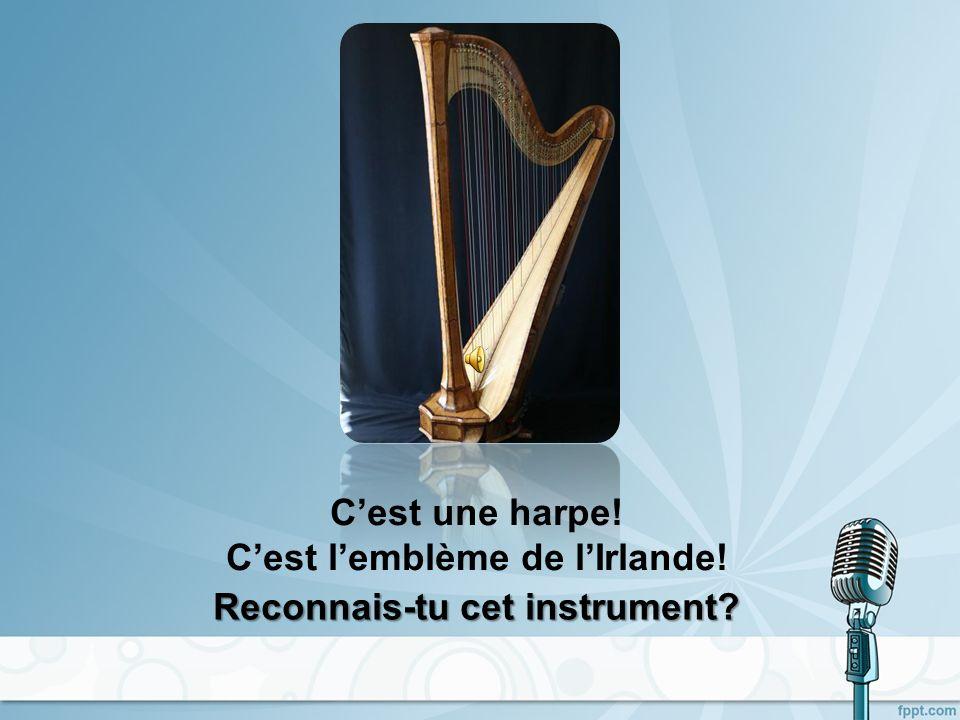 Cest un violon! Reconnais-tu cet instrument?