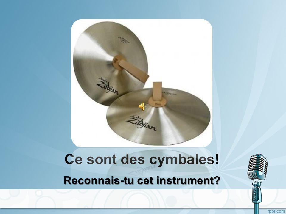 Cest une caisse claire! Reconnais-tu cet instrument?