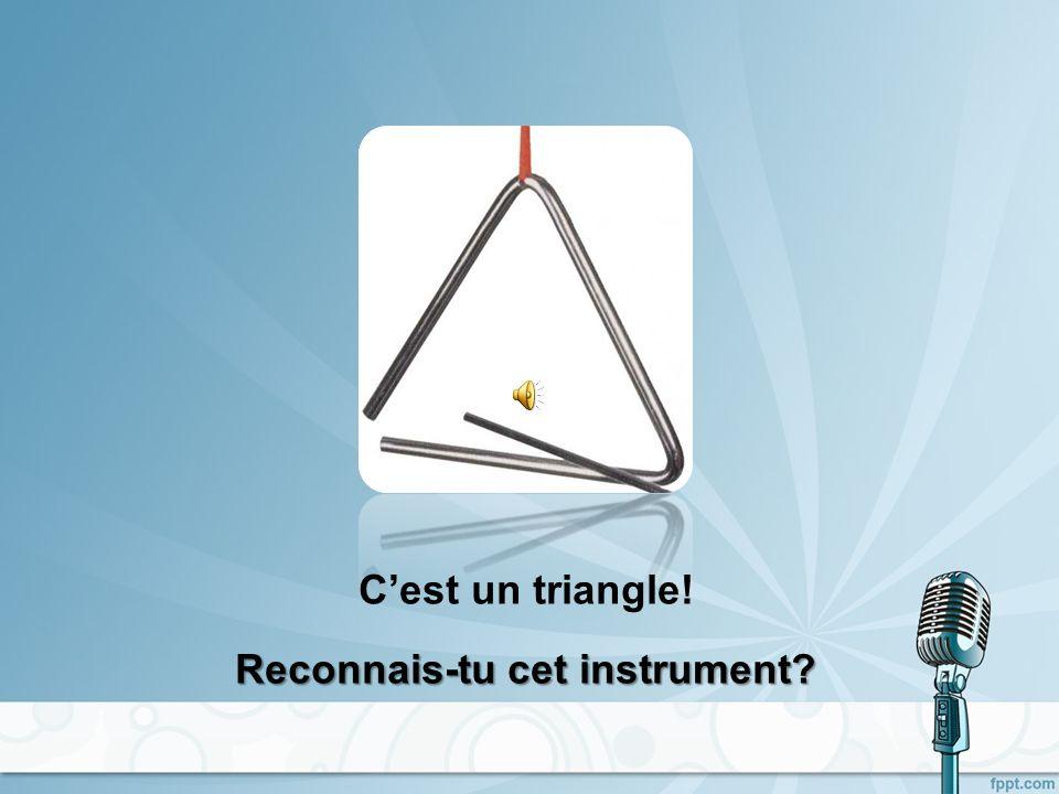 Ce sont des timbales! Reconnais-tu cet instrument?