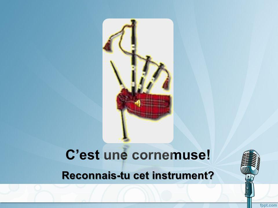 Cest une clarinette! Reconnais-tu cet instrument?