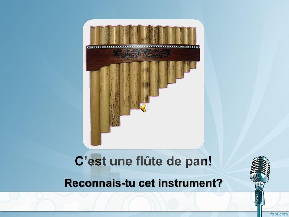 Cest une flûte à bec! Reconnais-tu cet instrument?