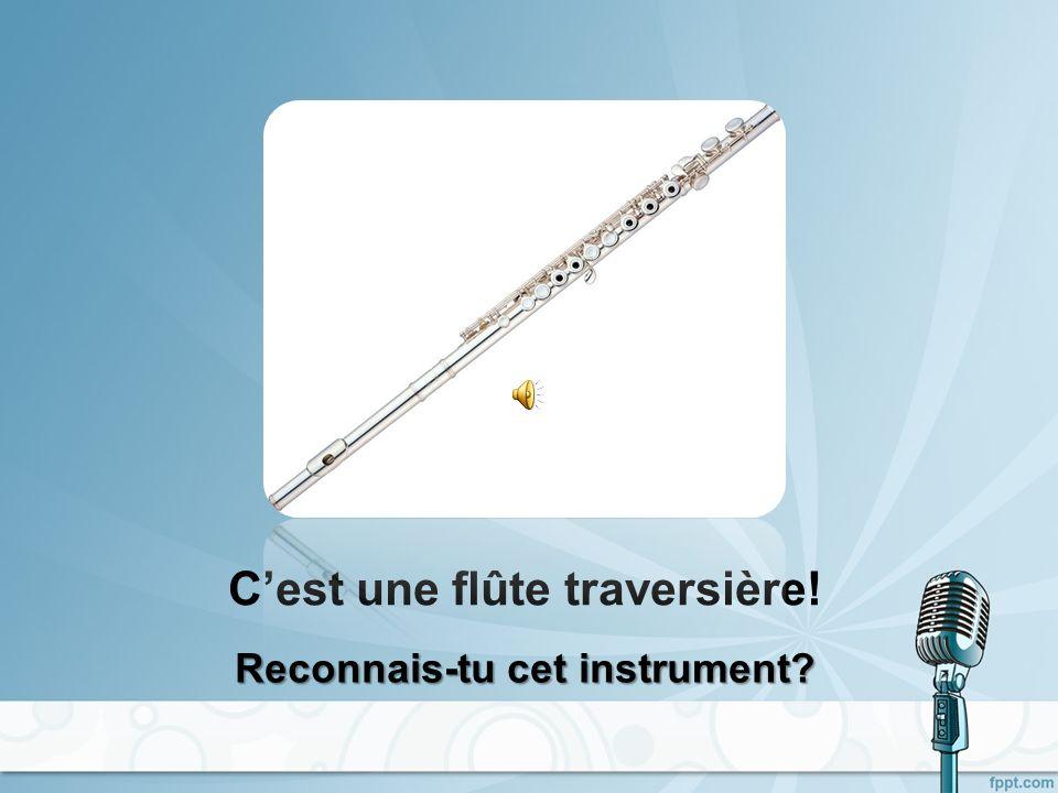 Cest une flûte de pan! Reconnais-tu cet instrument?