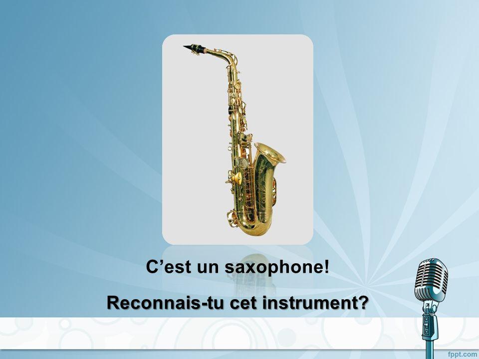 Cest une flûte traversière! Reconnais-tu cet instrument?