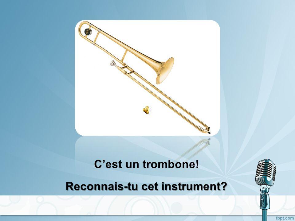 Cest un saxophone! Reconnais-tu cet instrument?