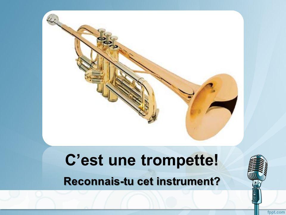 Cest un trombone! Reconnais-tu cet instrument?