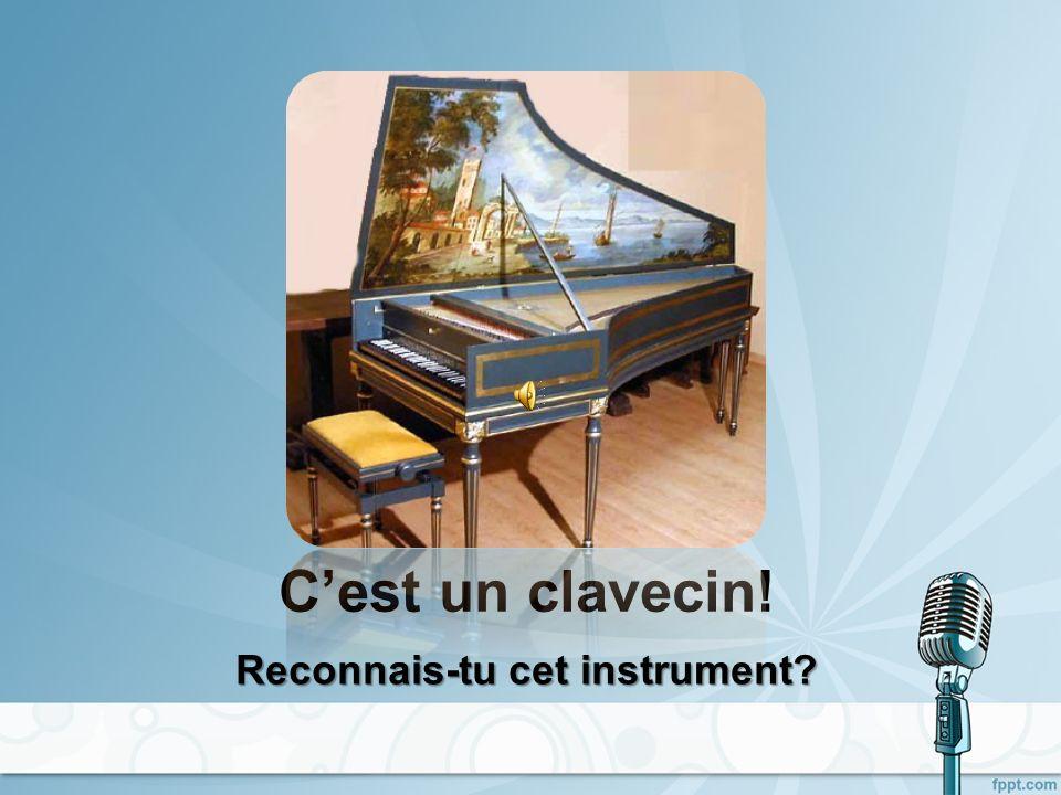 Cest un clavecin! Reconnais-tu cet instrument?
