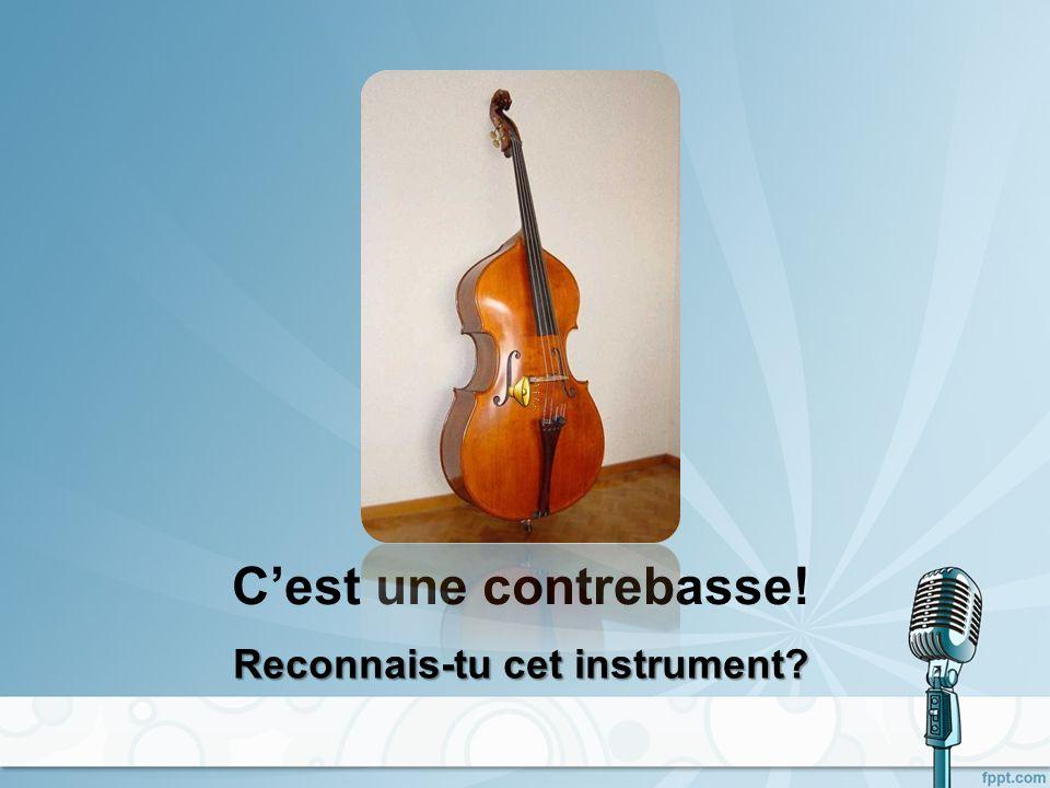 LES INSTRUMENTS À PERCUSSION Devine de quel instrument il sagit!