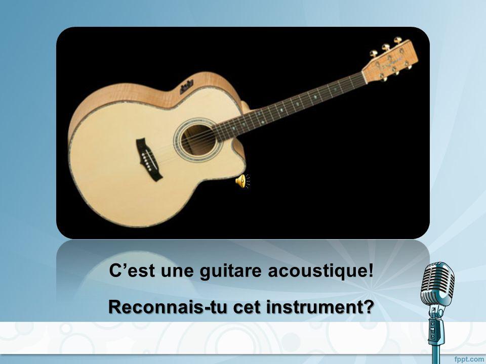 Cest une contrebasse! Reconnais-tu cet instrument?