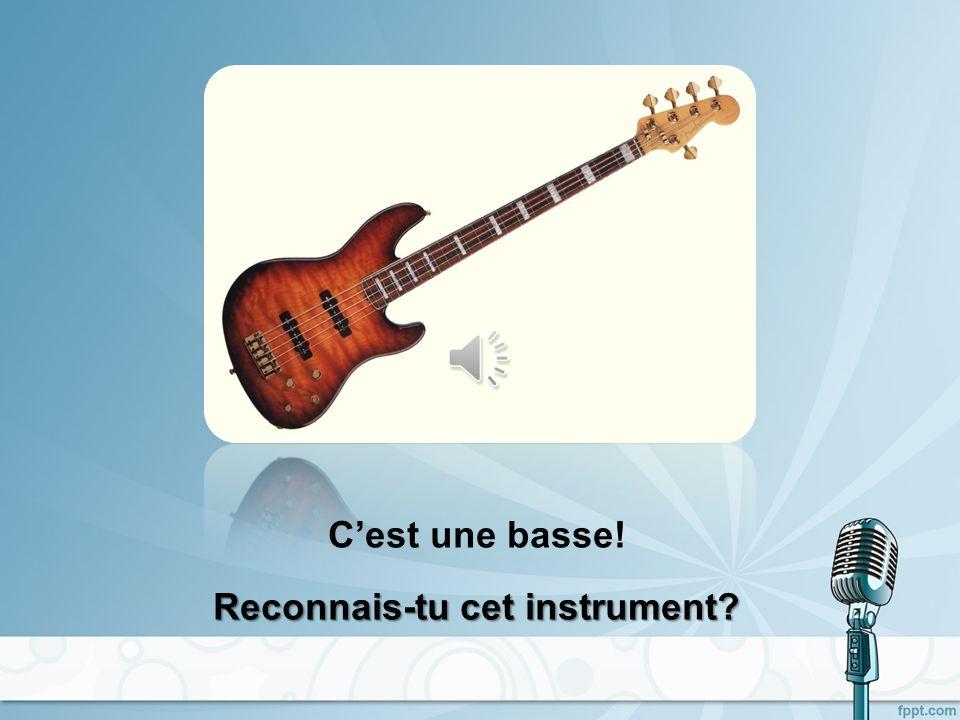 Cest une basse! Reconnais-tu cet instrument?