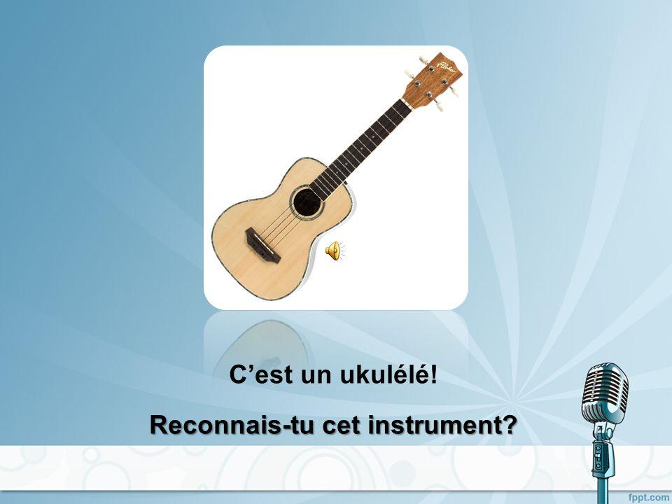Cest un ukulélé! Reconnais-tu cet instrument?
