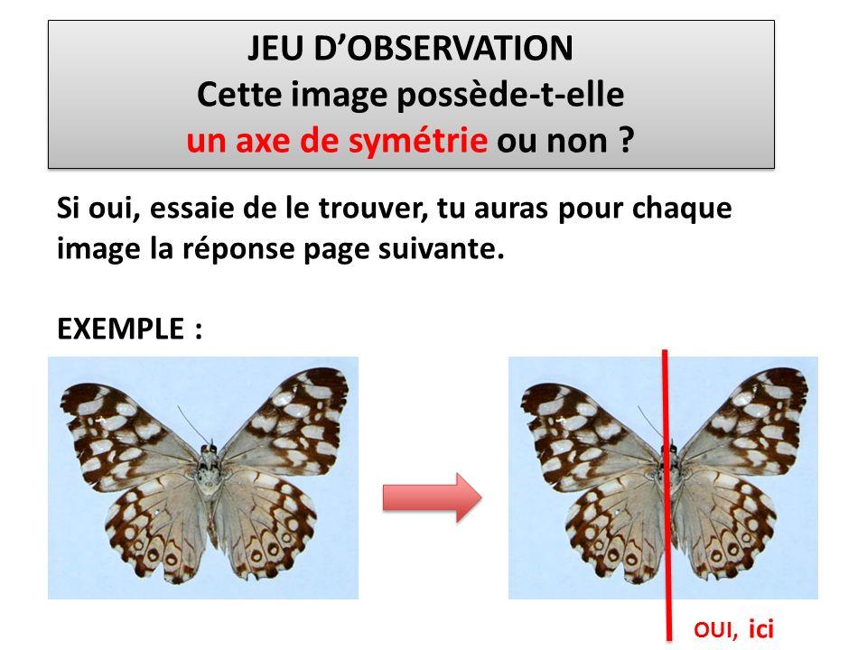 JEU DOBSERVATION Cette image possède-t-elle un axe de symétrie ou non ? JEU DOBSERVATION Cette image possède-t-elle un axe de symétrie ou non ? OUI, i