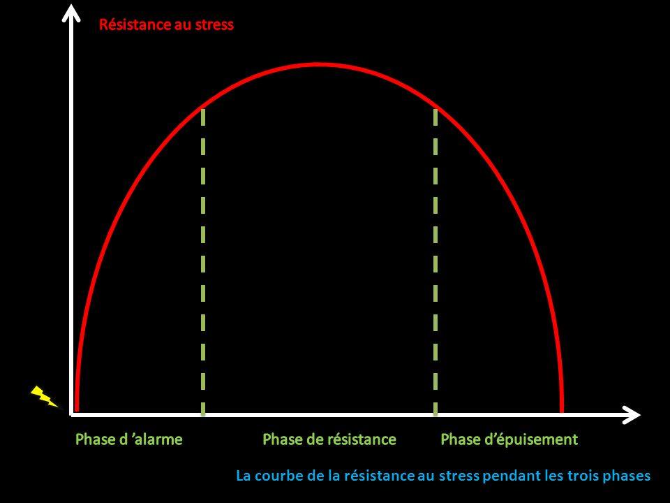 La courbe de la résistance au stress pendant les trois phases