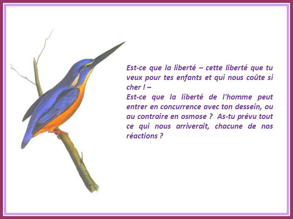 Texte : Madeleine DELBRÊL Commentaire : Jacky Oiseaux offerts par Jeanine Oustaloup que je remercie.